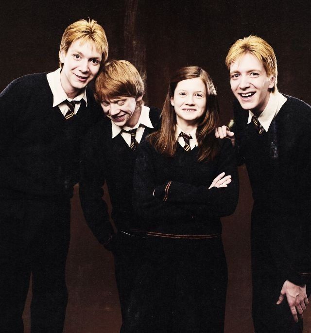 The Weasley Family Anything S Possible If You Ve Got Enough