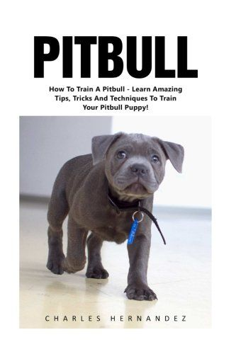 Pitbull How To Train A Pitbull Learn Amazing Tips Tricks And Techniques To Train Your Pitbull Puppy With Images Pitbull Puppies Training Pitbull Puppy Training Your Dog