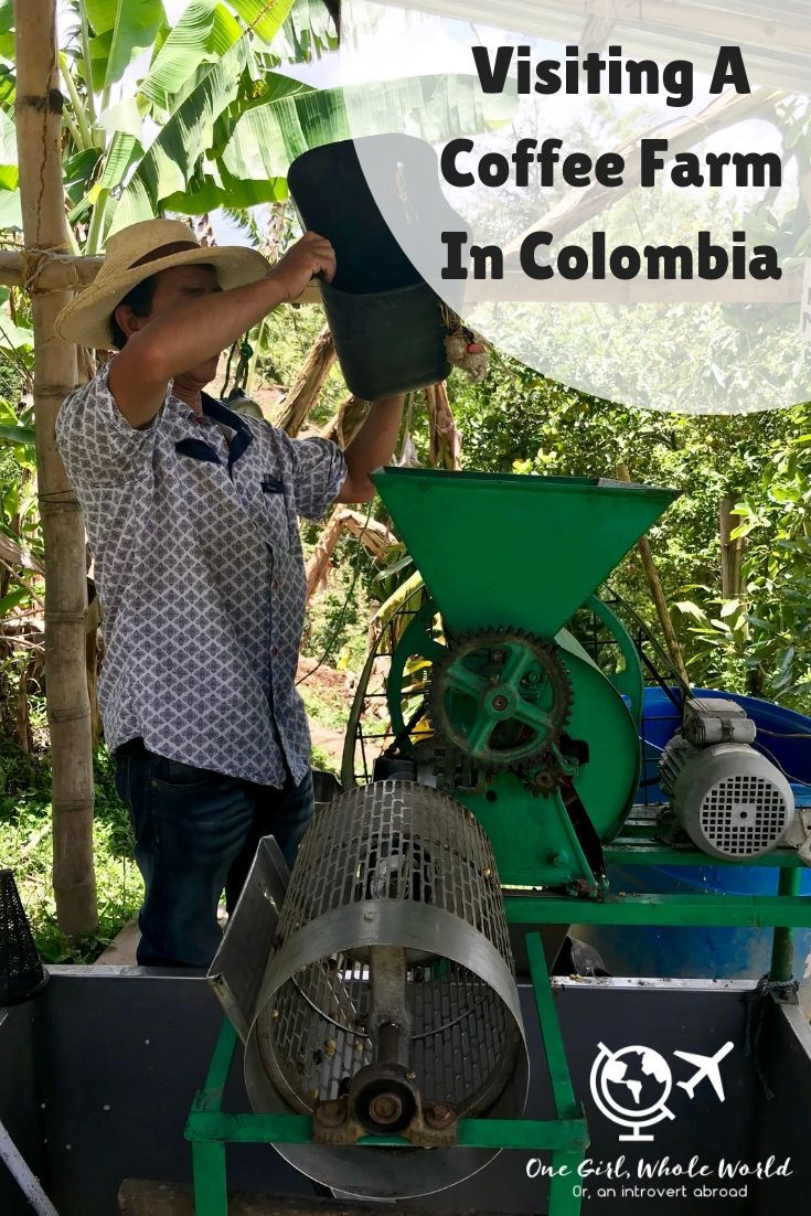 Why A Coffee Tour In Colombia Is A MustDo Coffee farm