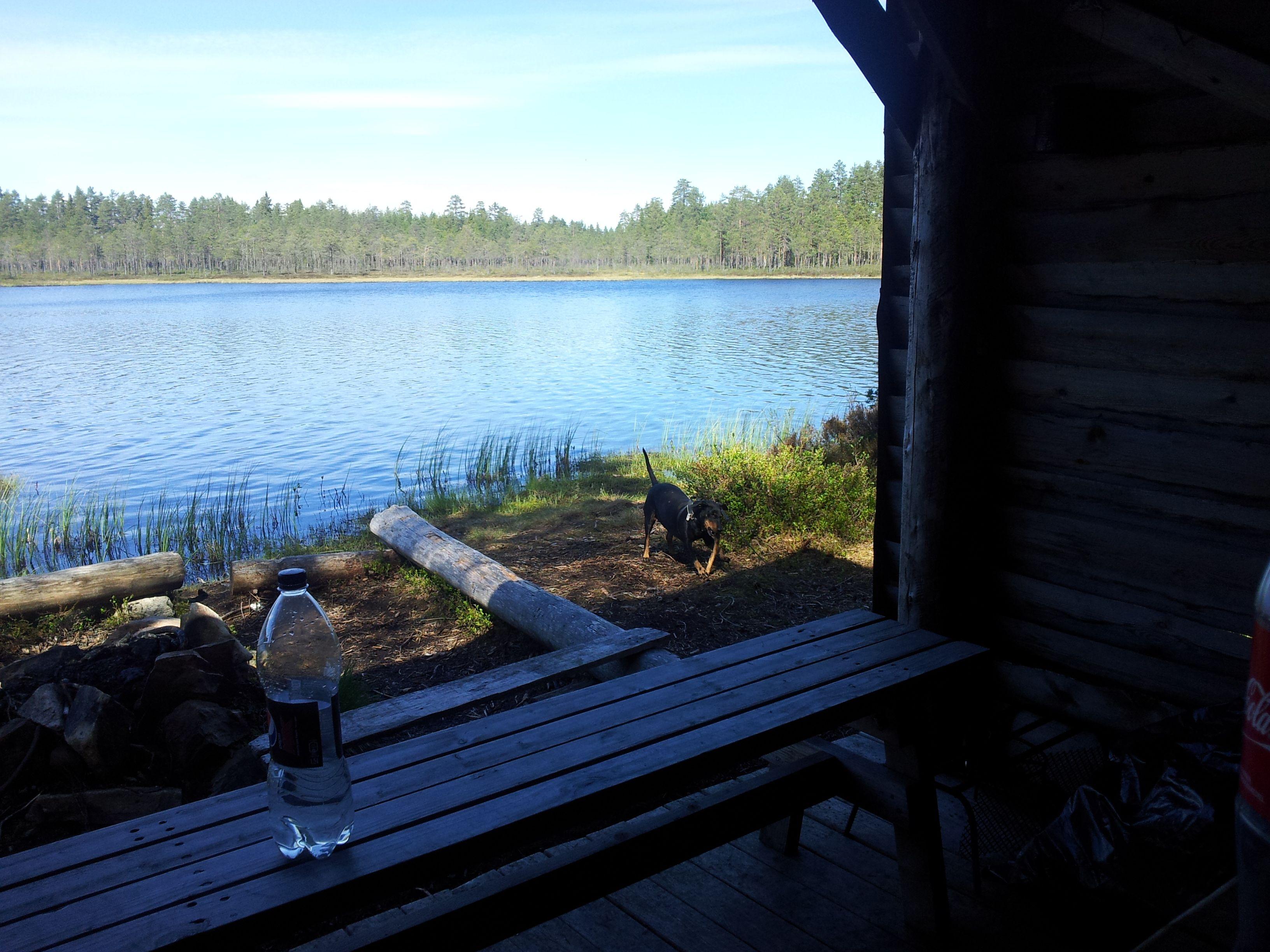 ut no kart Jøstjernet. #Tjennrunden. #Mosjømarka. #Løten. #Gapahuken #Sverres  ut no kart