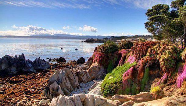 Beautiful Northern California Drop Top: These 15 Jaw Dropping Places In Northern California Will