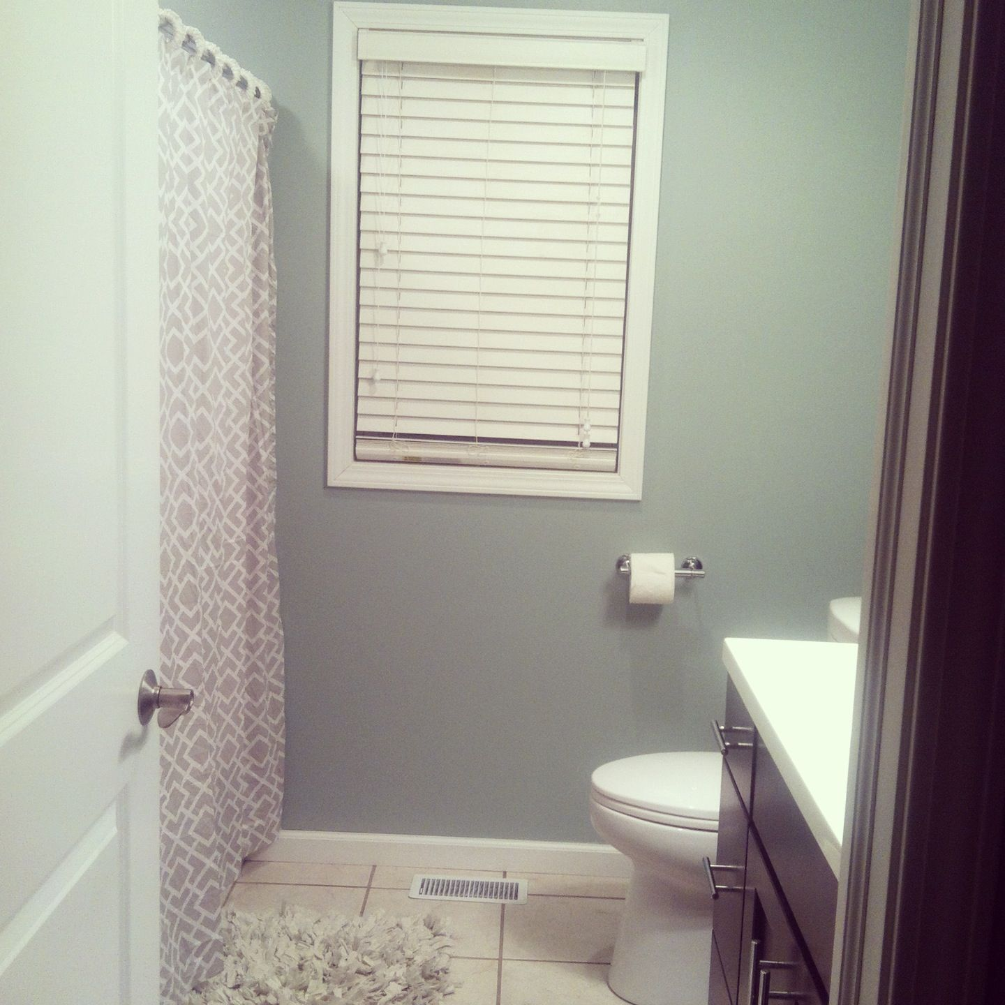 Love our new bathroom color Sherwin Williams Silvermist paint
