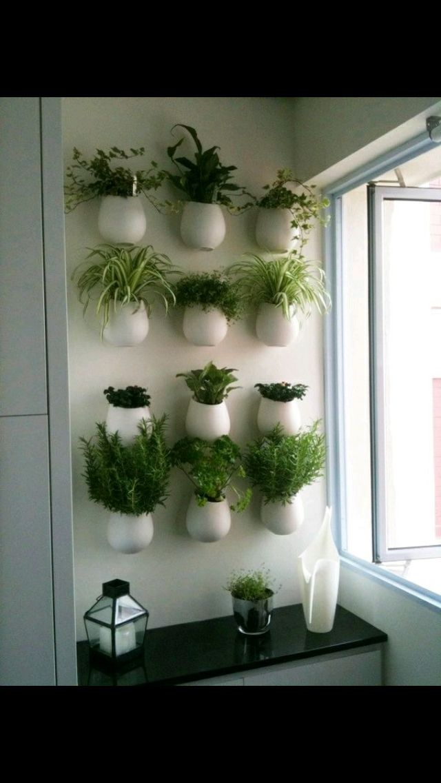 Inside Plants. Herb WallWall Herb Garden ...