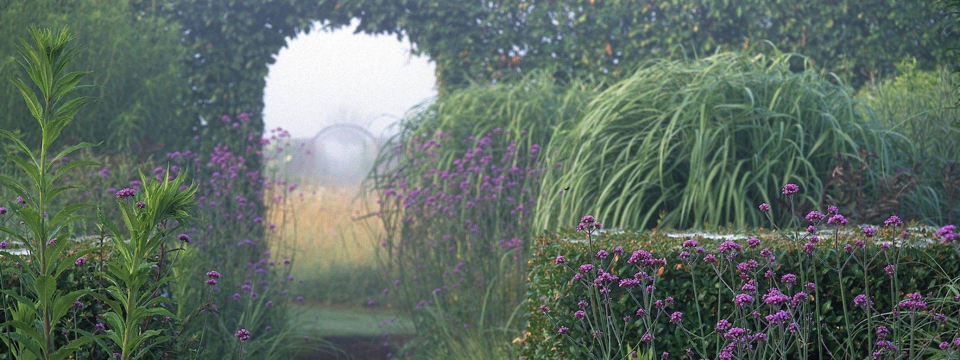 Der Jardin Plume Wie Eine Feder Im Wind Stauden Naturnaher Garten Obstwiese