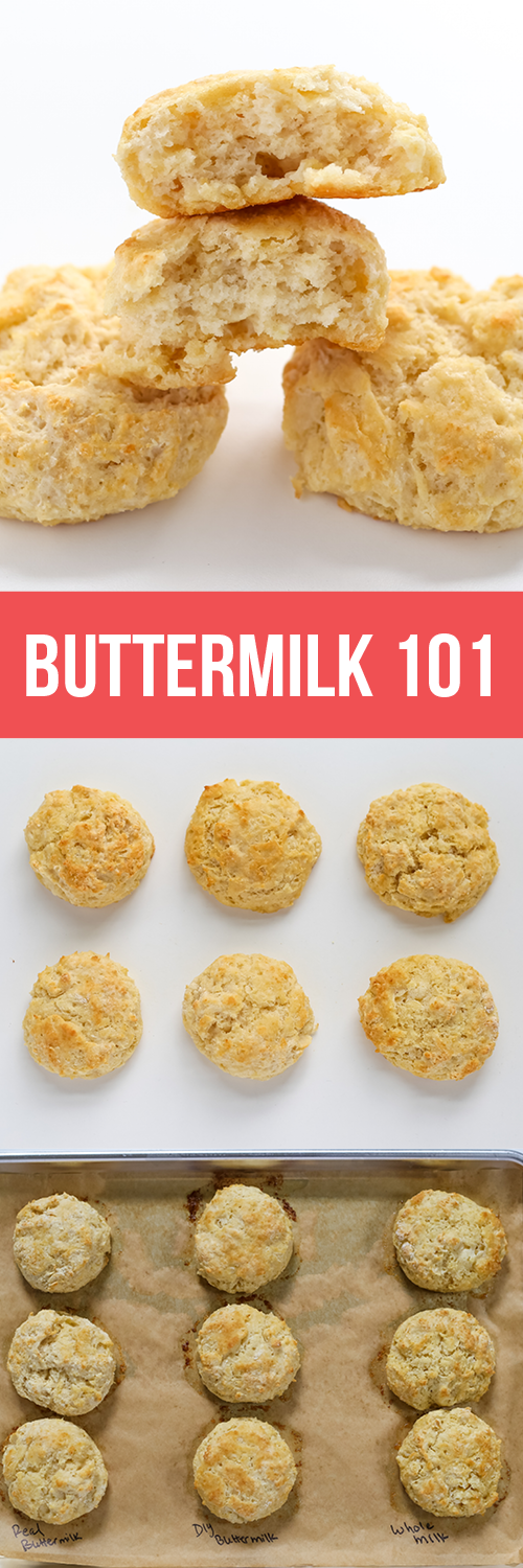 Buttermilk 101 What It Is How It Works In Baking And Testing Substitutions Side By Side In Biscuits And Muf Baking Science Buttermilk Recipes Baking Basics