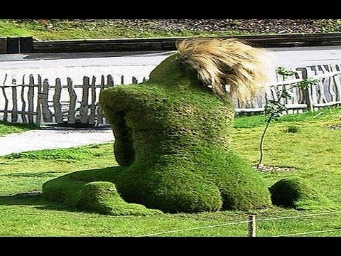 Most Amazing Living Plant Sculptures   YouTube