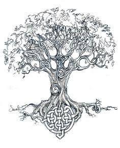 Image Result For Celtic Alder Tree Tattoos Short Hair Tattoos