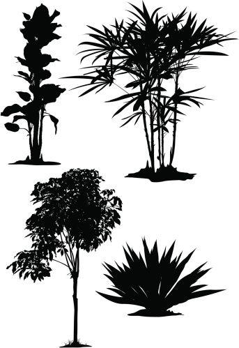 Vectores libres de derechos: Plants