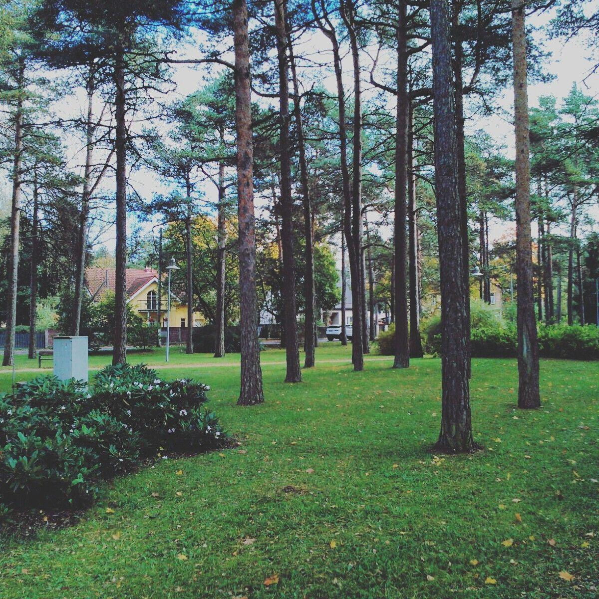 Beautiful Estonia !!