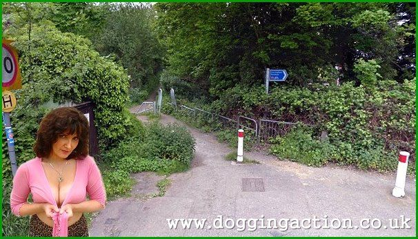 Photos Of Dogging Locations
