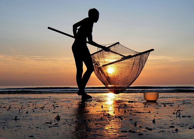 Pêche à la crevette ! | Flickr – Condivisione di foto!