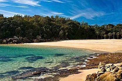 shelly beach sydney the most amazing shallow beach with. Black Bedroom Furniture Sets. Home Design Ideas