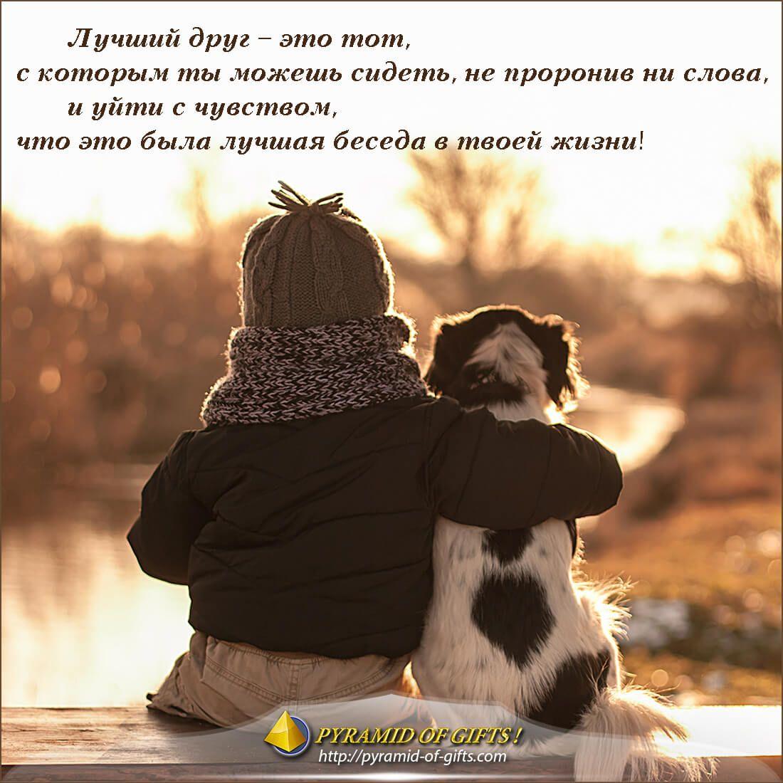 Цитаты про фото и друзья