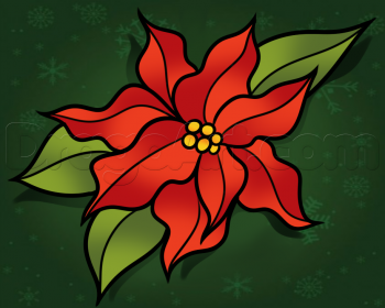 Pin By Cheryl Mayo On Christmas Poinsettas Flower Drawing Flower Drawing Tutorials Drawings