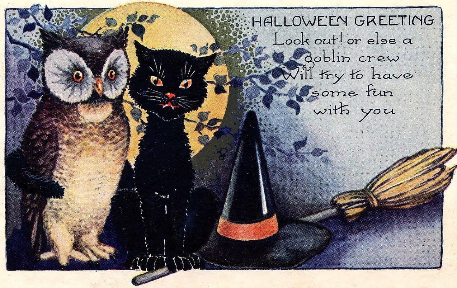 Halloween Greeting Owl Place Mat