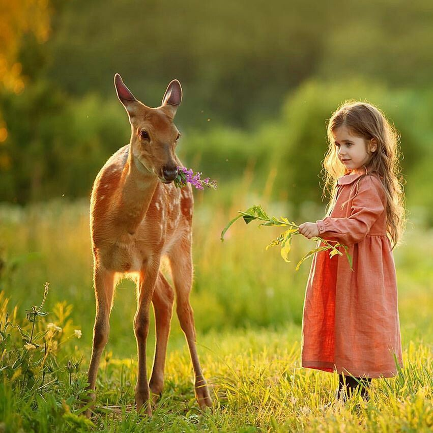 Pin by Majestic Soul on Cute baby girls Cute animals