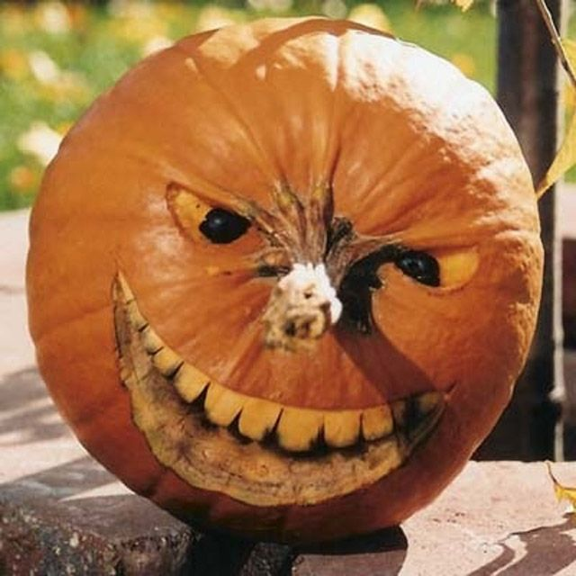 Horrible t te de citrouille la f te d 39 halloween adornos halloween decoraciones de calabaza - Tete de citrouille ...