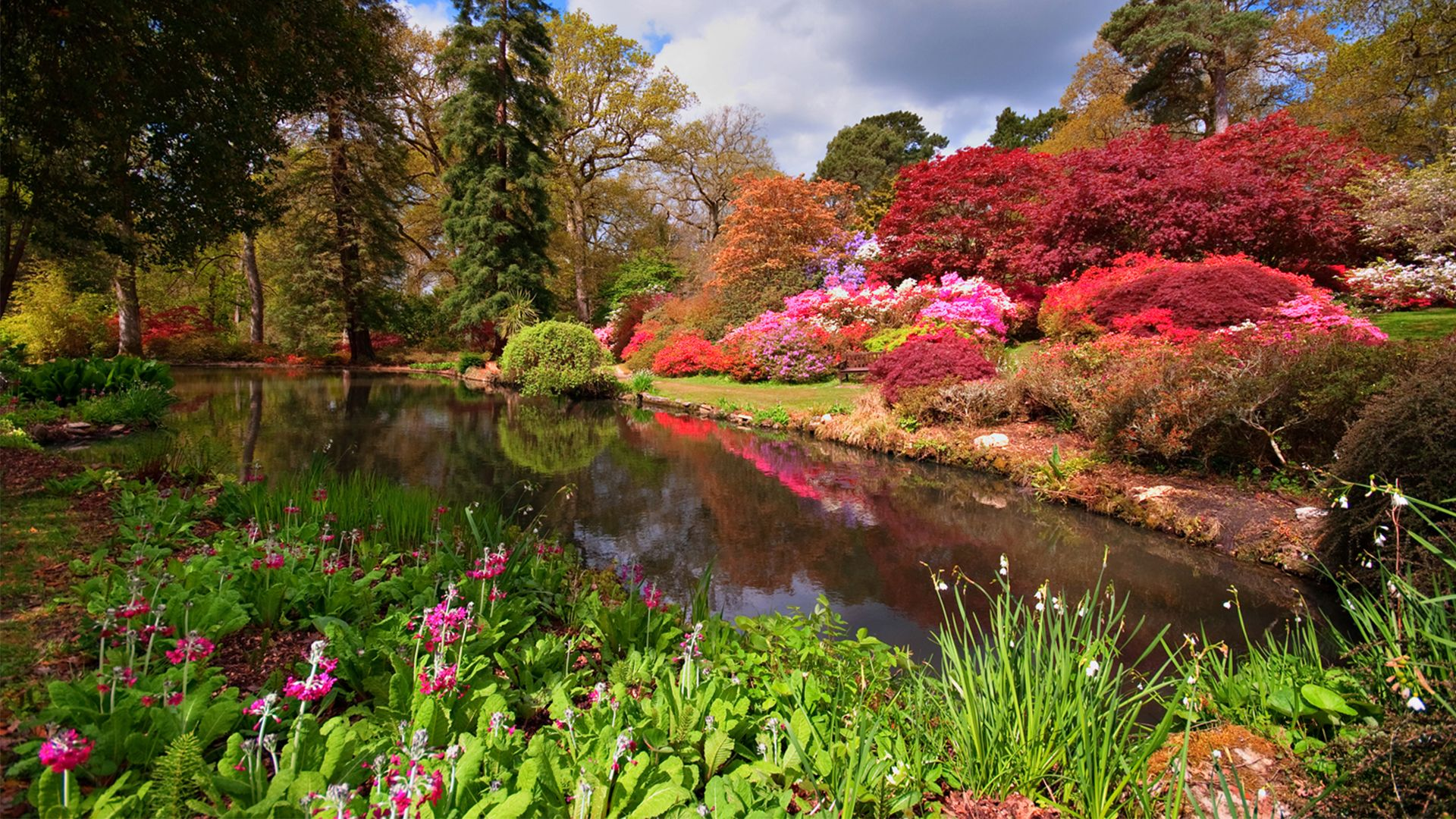 Gardens Images forests, gardens and fun on pinterest