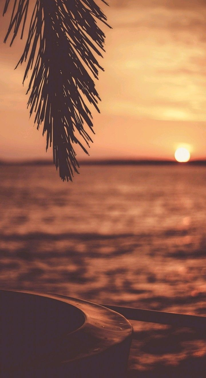 Sunset Dengan Gambar