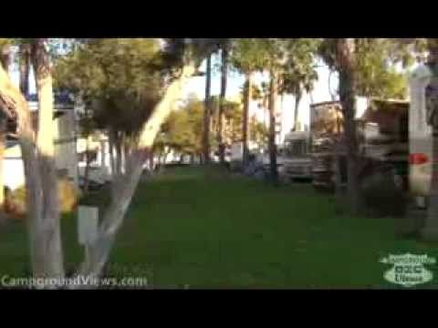 Golden Shore Rv Park In Long Beach Ca From A Campers Perspective Longbeach Rvpark Campground Rv Camping Beach Marina Ci Rv Parks Beach The Good Place
