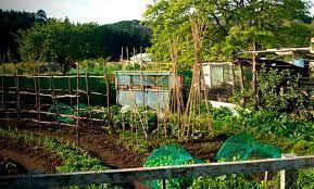 rsultat de recherche dimages pour jardin permaculture - Jardin Permaculture