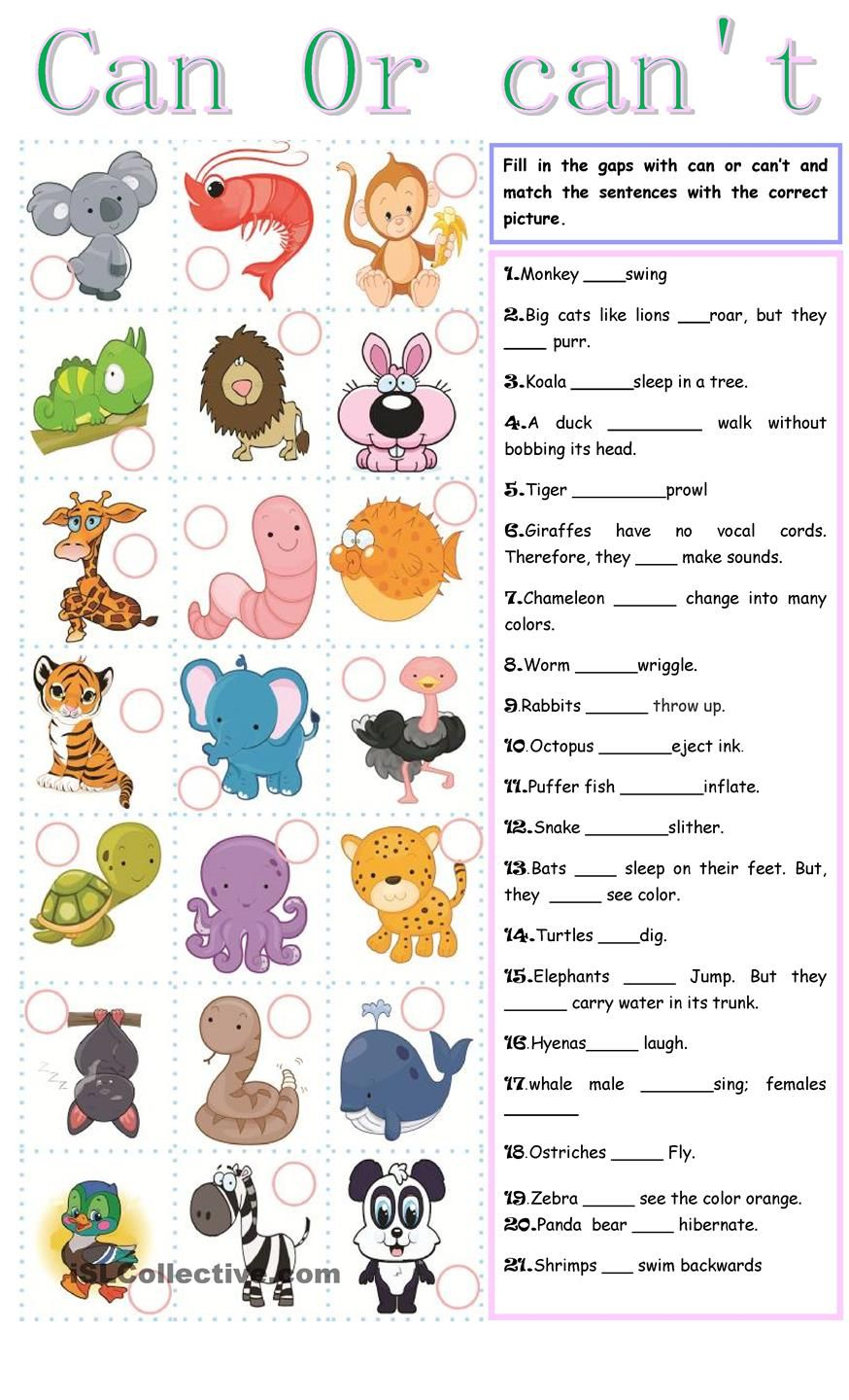 Can or can t | FREE ESL worksheets | English | Pinterest | Englisch ...