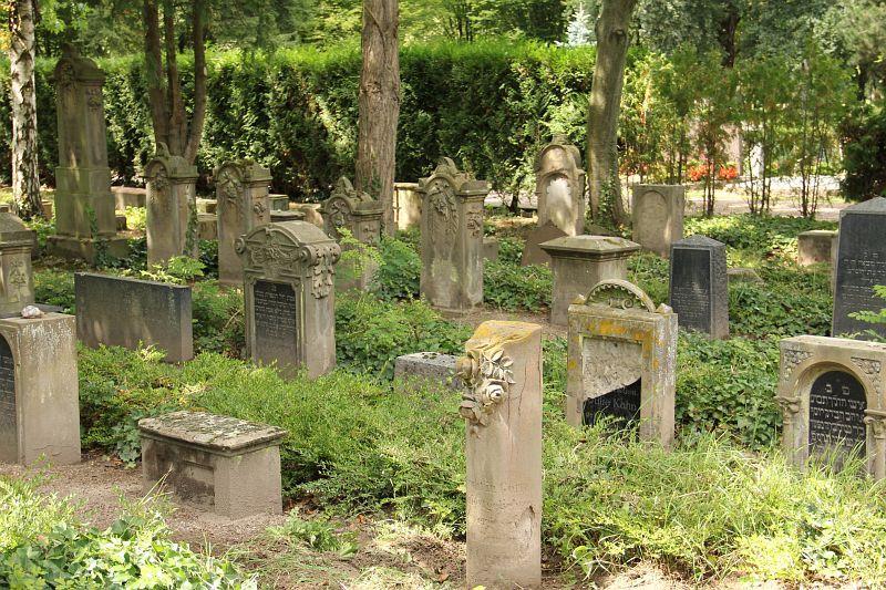 Speyer Friedhof 11055.jpg (800×533)
