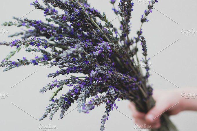 Hand Held Lavender Flower Bouquet Lavender Flowers Flowers Bouquet Hands Holding Flowers