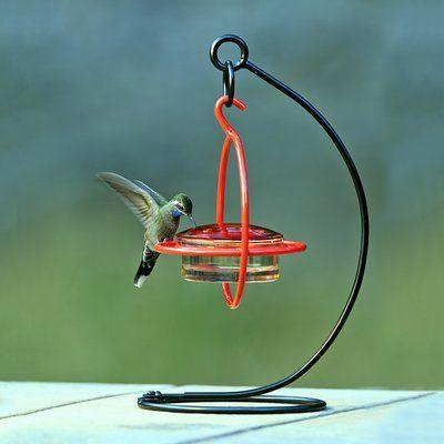 Couronne Tabletop Bird Feeder Stand Wayfair Humming Bird Feeders Bird Feeder Stands Bird Feeders