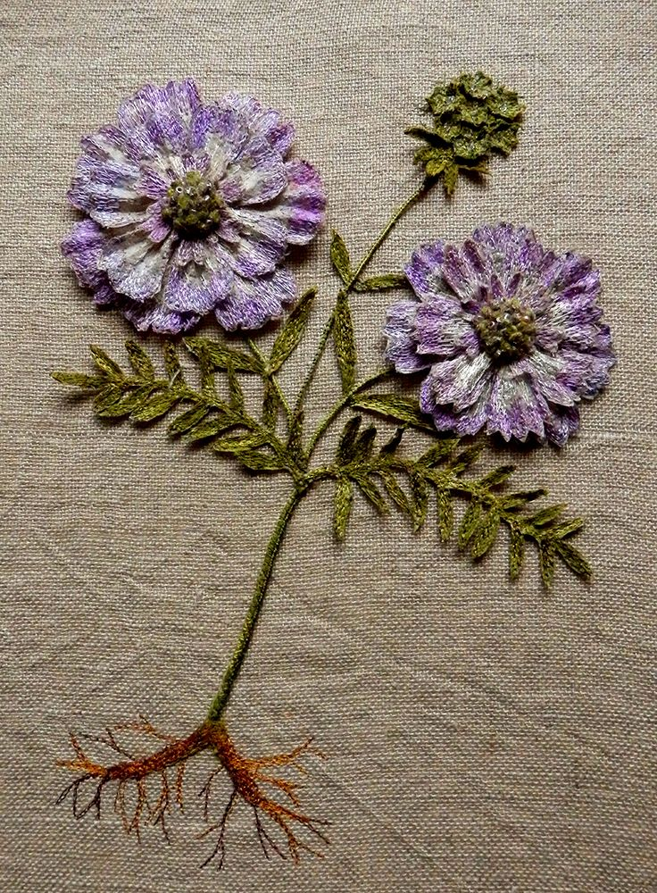 'Scabiosa', 3D, botanical embroidery, textile artwork for Spring by Corinne Young -