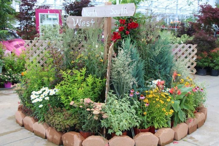 garden center displays - Bing Images | Nursery Ideas | Pinterest ...