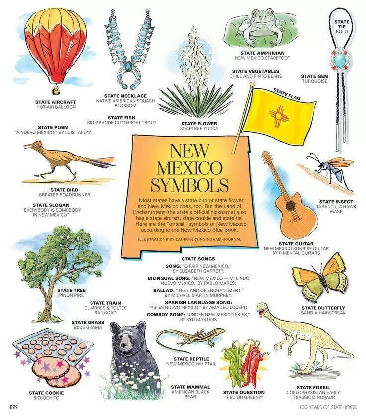 State Symbols Land Of Enchantment Pinterest Buckets