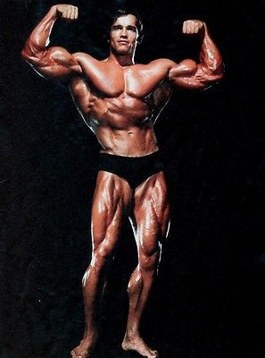Arnold Schwarzenegger Bodybuilder Olympia Silk Cloth Poster 32 X 24 Decor Arnold Schwarzenegger Body Schwarzenegger Bodybuilding Arnold Schwarzenegger