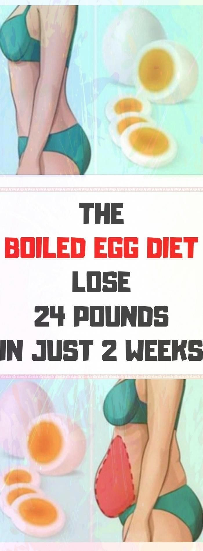 The Boiled Egg Diet � Lose 24 Pounds In Just 2 Weeks � Lifee Too#health #fitness #healthandfitness  #boiledegg #boiledeggnutrition The Boiled Egg Diet � Lose 24 Pounds In Just 2 Weeks � Lifee Too#health #fitness #healthandfitness  #boiledegg #boiledeggnutrition The Boiled Egg Diet � Lose 24 Pounds In Just 2 Weeks � Lifee Too#health #fitness #healthandfitness  #boiledegg #boiledeggnutrition The Boiled Egg Diet � Lose 24 Pounds In Just 2 Weeks � Lifee Too#health #fitness #healthand #boiledeggnutrition