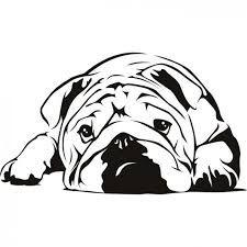 ผลการค้นหารูปภาพสำหรับ english bulldog line drawing