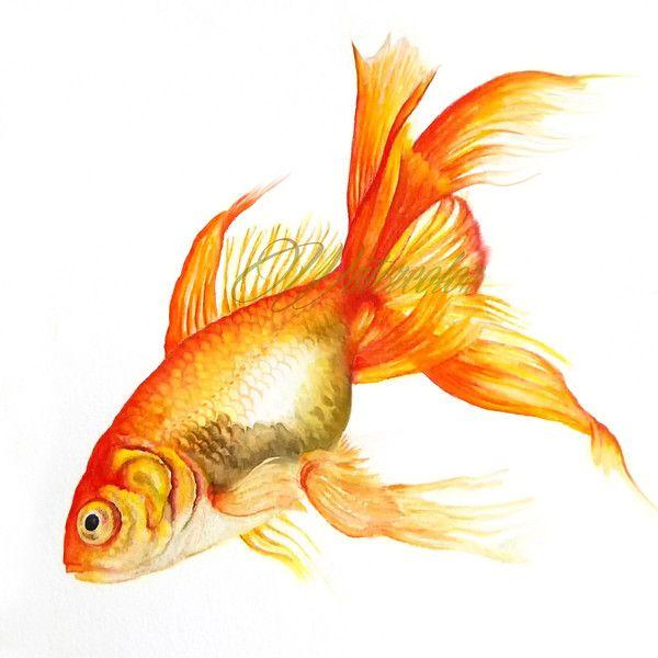 Goldfish Print, Watercolor, Wall Art, Print, Printable Artwork ...