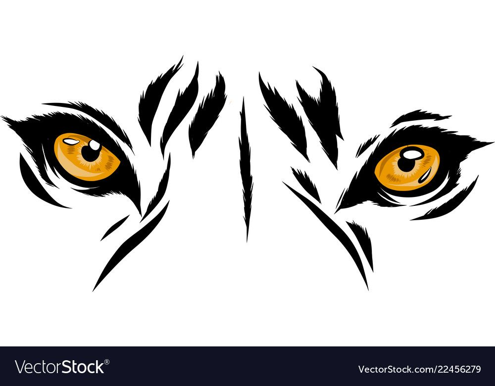 Tiger Eyes Mascot Graphic In Royalty Free Vector Image Ad Mascot Graphic Tiger Eyes Ad Tiger Illustration Tiger Art Tiger Eyes Tattoo