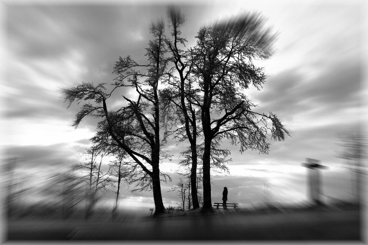 Chris Milla Photography