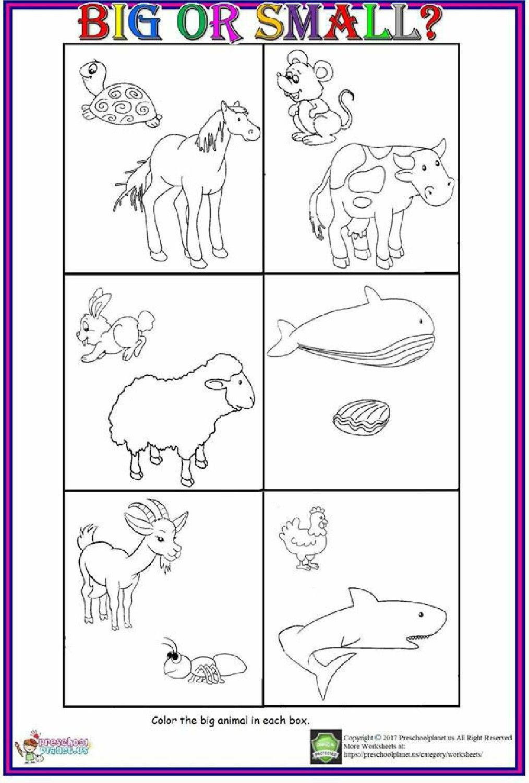 Big Or Small Worksheet For Kids 2019 Coloringsheet Worksheets Kinde Kindergarten Worksheets Kindergarten Worksheets Printable Free Kindergarten Worksheets [ 1500 x 1014 Pixel ]