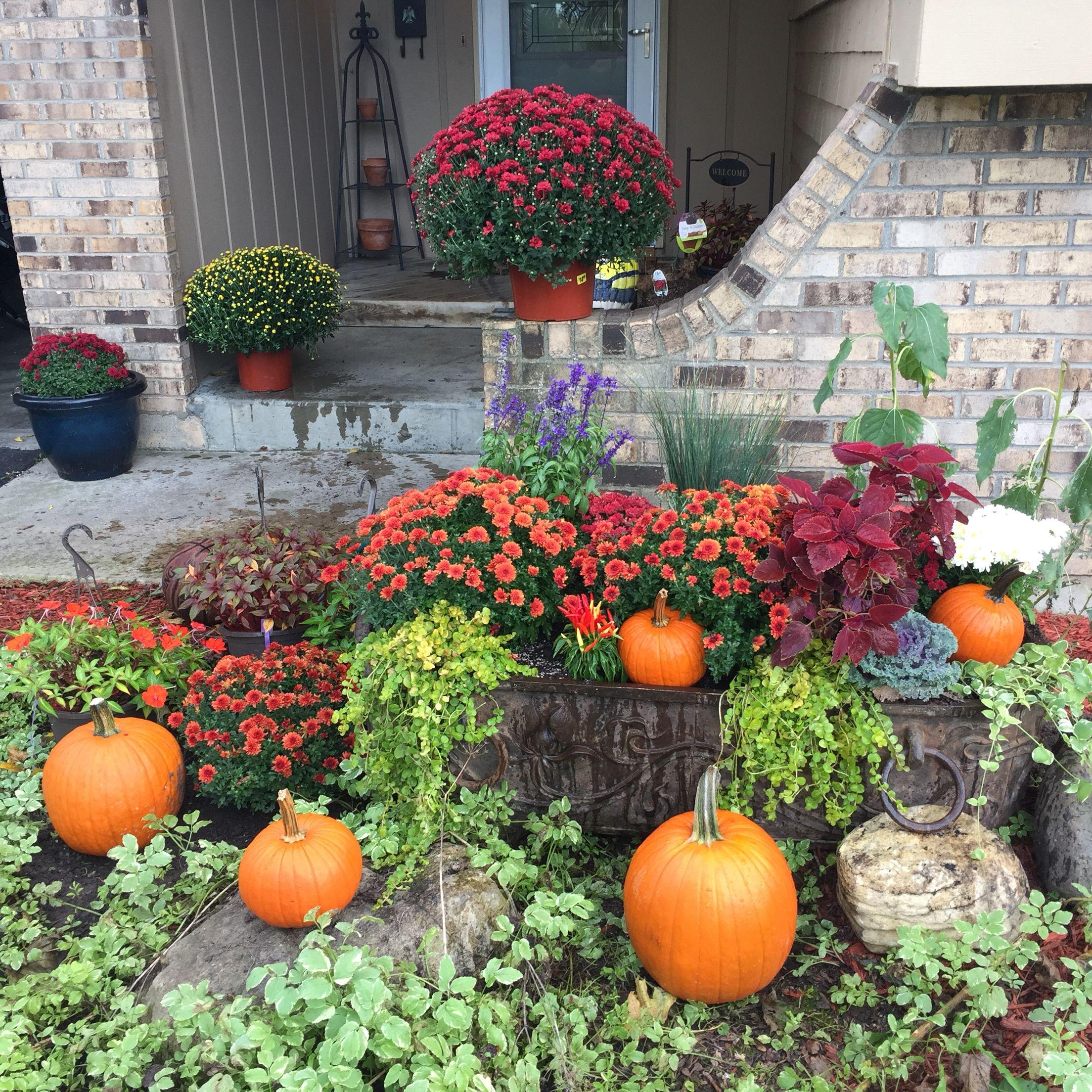 Tub planter for Fall season.