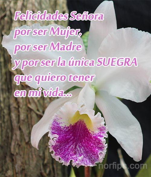 Mensajes Para Mi Suegra De Felicitacion Y Elogio Feliz Dia