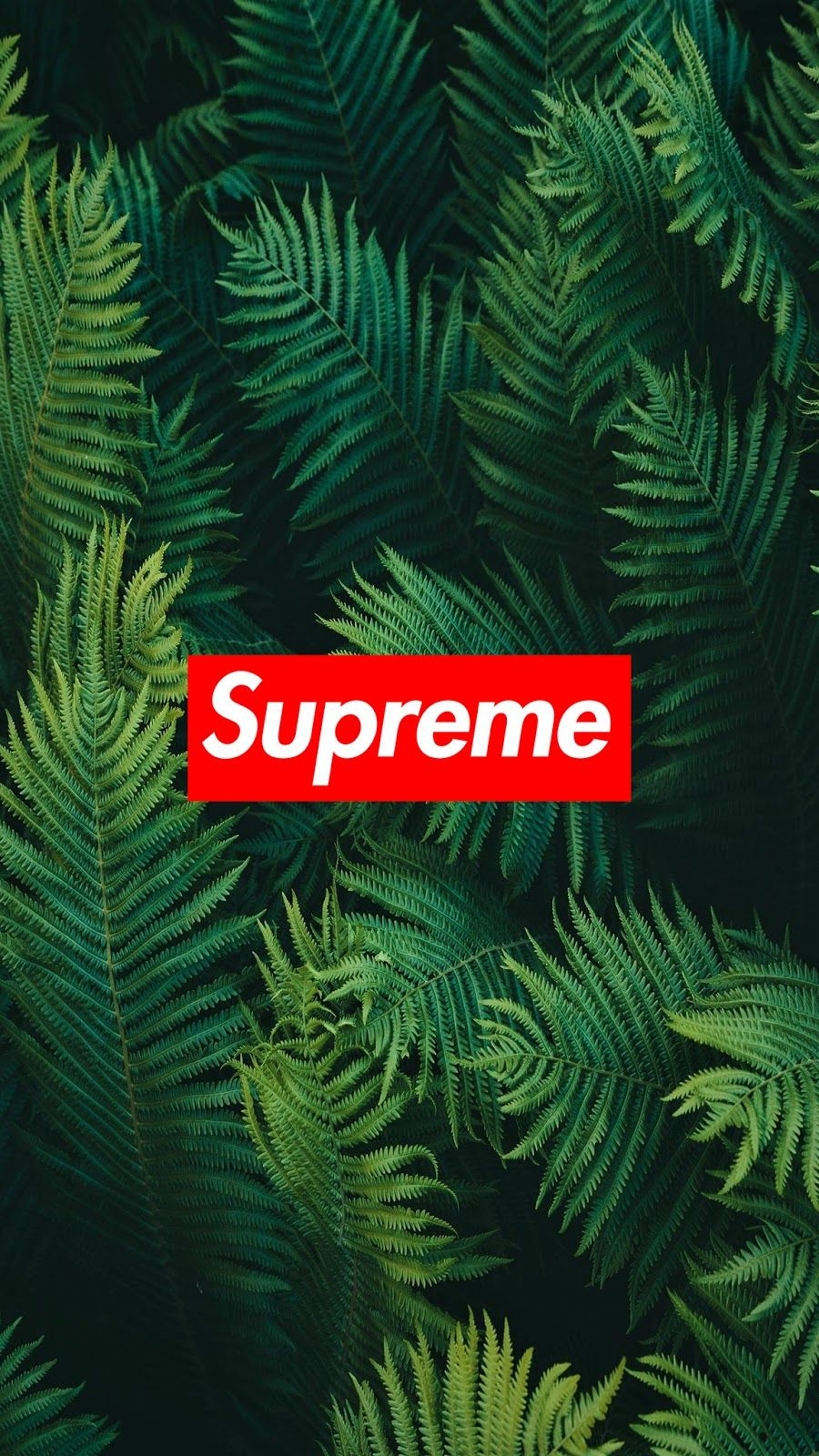 Supreme Wallpaper Collection For Mobile Cool Wallpapers Heroscreen Cc Supreme Wallpaper Supreme Iphone Wallpaper Hypebeast Wallpaper