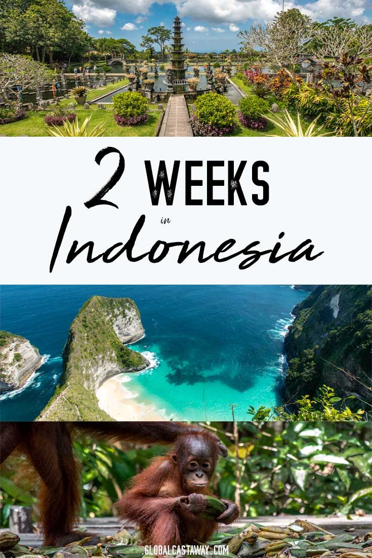 See the best way to spend 2 weeks in indonesia itinerary. Explore Bali, Bromo, Borneo and Komodo and see what else is there to travel in Indonesia | Indonesia travel | Indonesia itinerary | 2 weeks in Indonesia | Indonesia travel guide