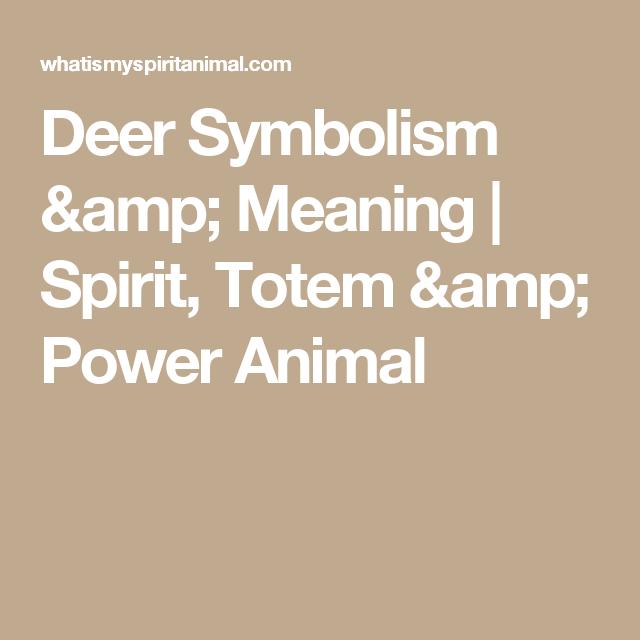 Deer Symbolism Meaning Power Animal