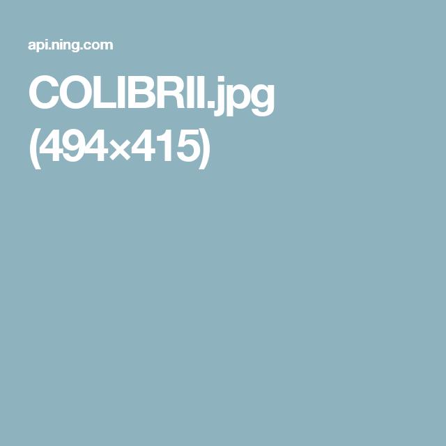 COLIBRII.jpg (494×415)