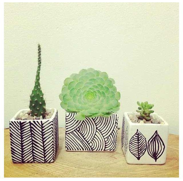 Plante verte graphique maison home pinterest for Plante verte decorative