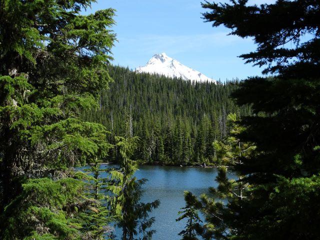 Oregon Top 5: Best easy hikes in the Mount Jefferson Wilderness