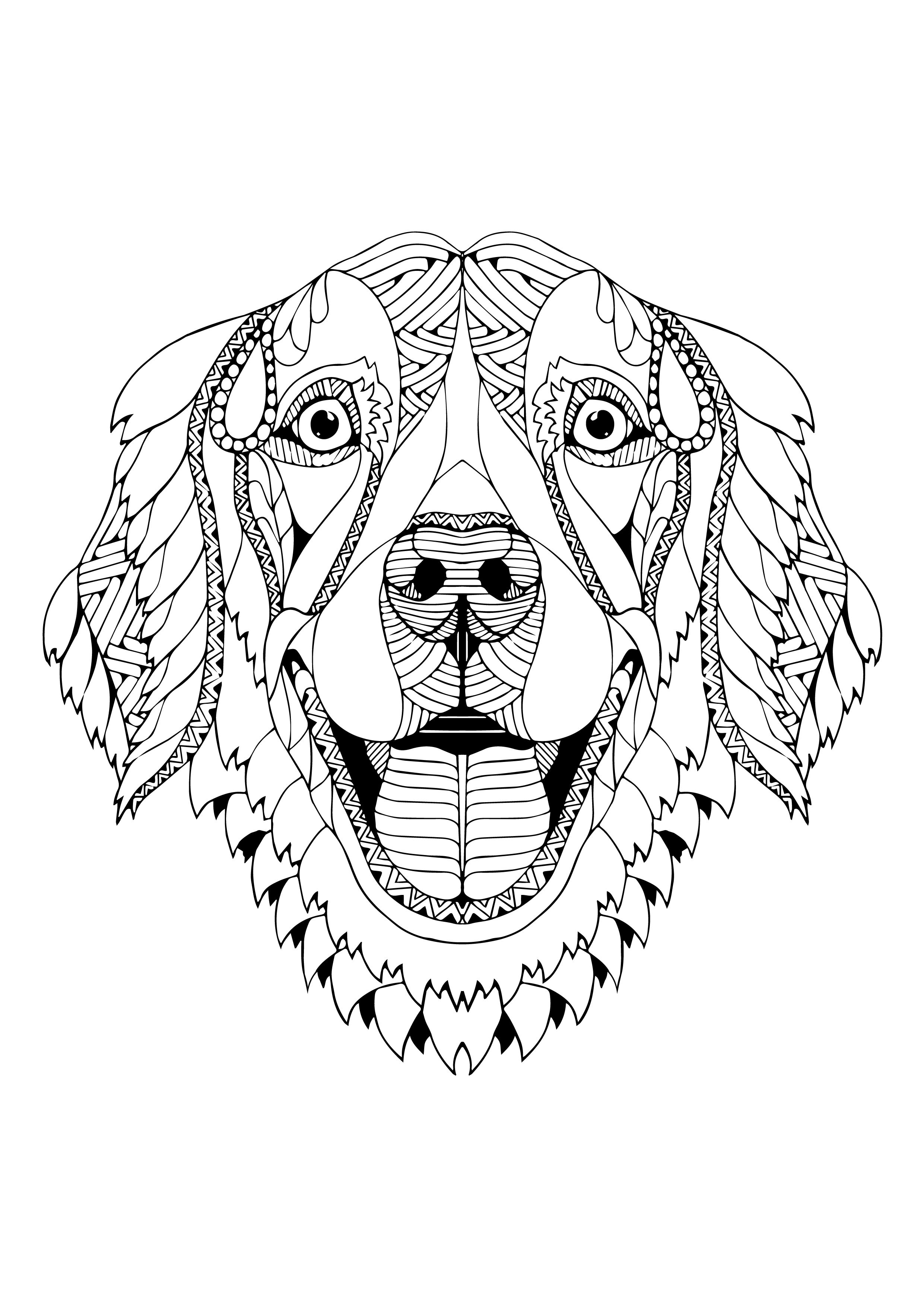Facebook T Shirt Dog Coloring Page Animal Coloring Pages Dog Coloring Book [ 3508 x 2481 Pixel ]