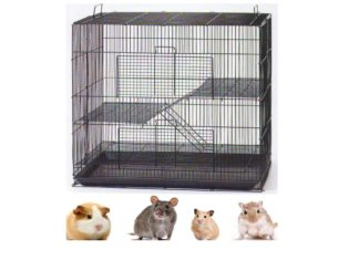 How To Get Rid Of Ants In Guinea Pig Cage