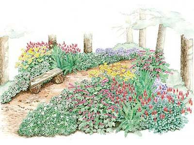 A Woodland Path Garden Plan With Images Garden Planning
